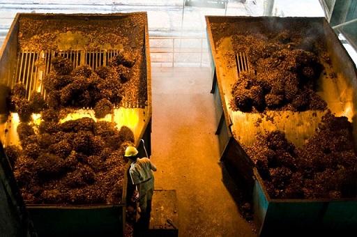 Processing palm oil fresh fruit bunch at a GAR facility