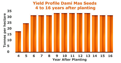 dxp_oil_palm_seed_yield_performance