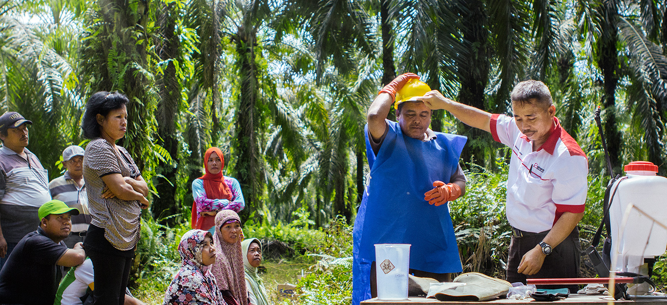 Meet the makers of palm oil