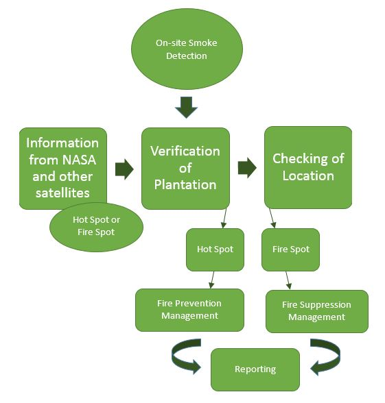 05_identification_and_organisation_process_rev