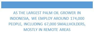 As the largest palm oil grower in Indonesia, we employ around 174,000 people, including 67,000 smallholders, mostly in remote areas