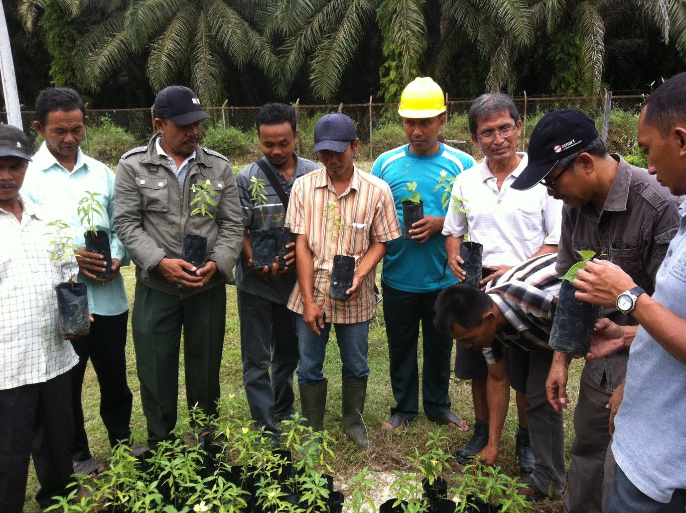 SMARTRI conducting a training session for smallholders