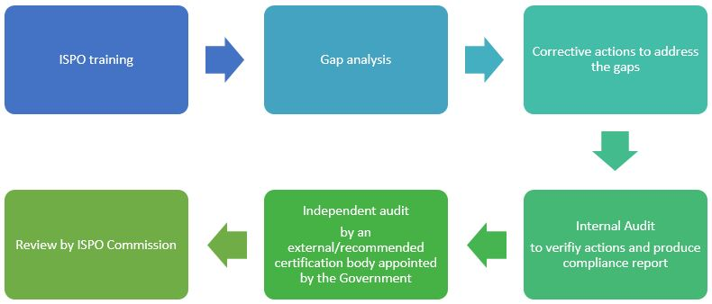 The process of obtaining ISPO certificates carried out by GAR/SMART