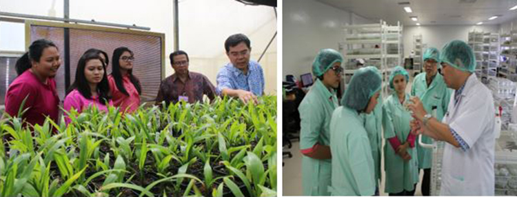 Visiting students talk about SMART's biotech innovations with Tony Liwang, Head of Plant Production and Biotechnology Division