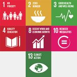 sustainable development goal icon