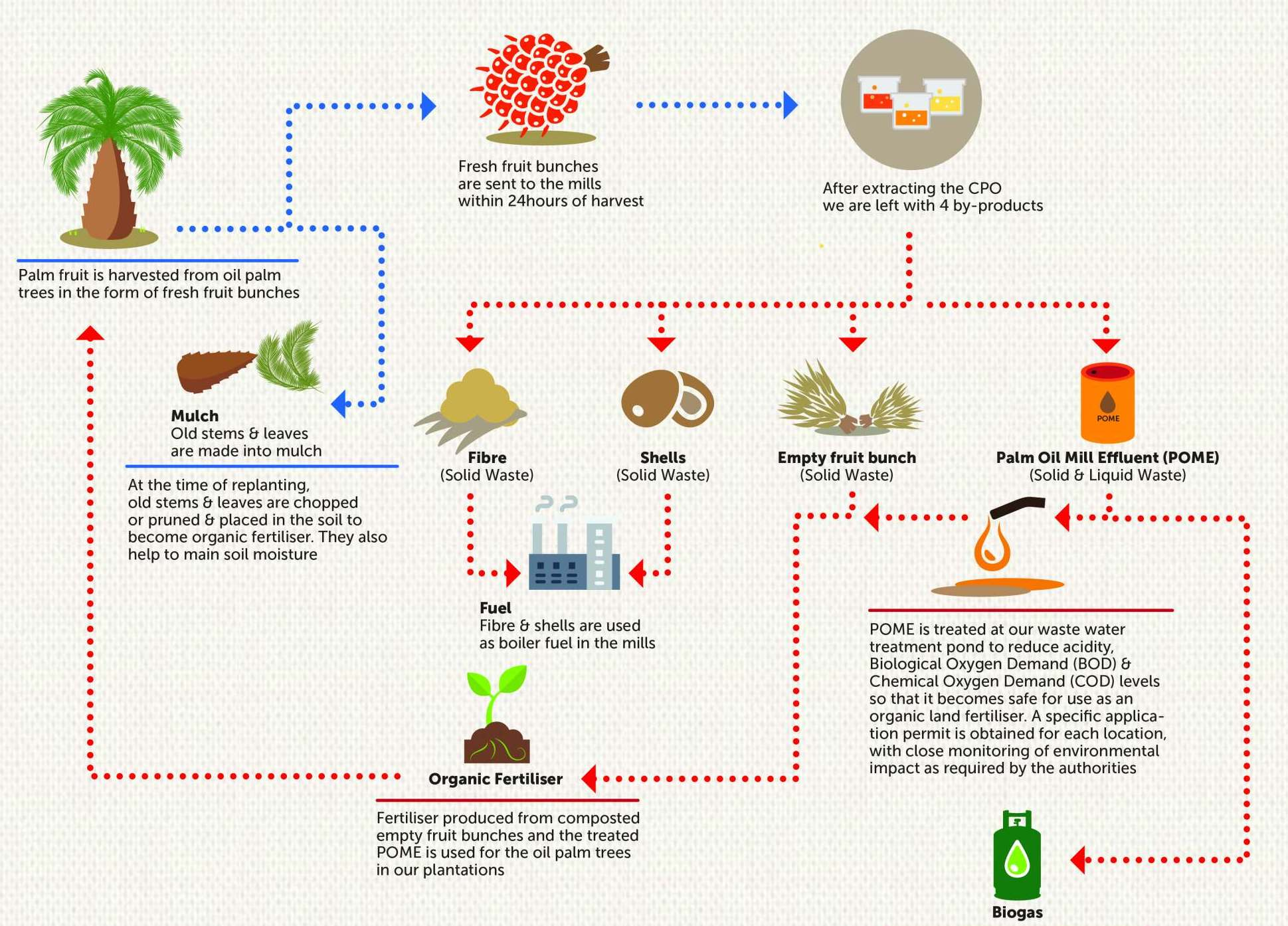How It Works Zero Waste In Palm Oil Production Golden Agri Resources