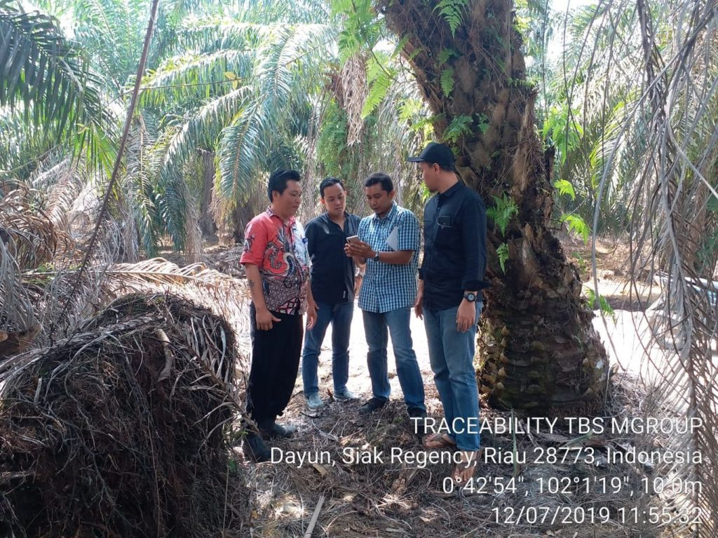 Interview and traceability application introduction to farmers.